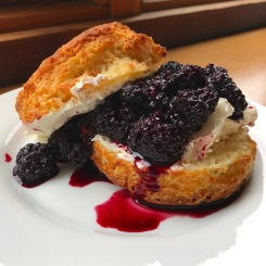 Biscuit butter & blackberry jam